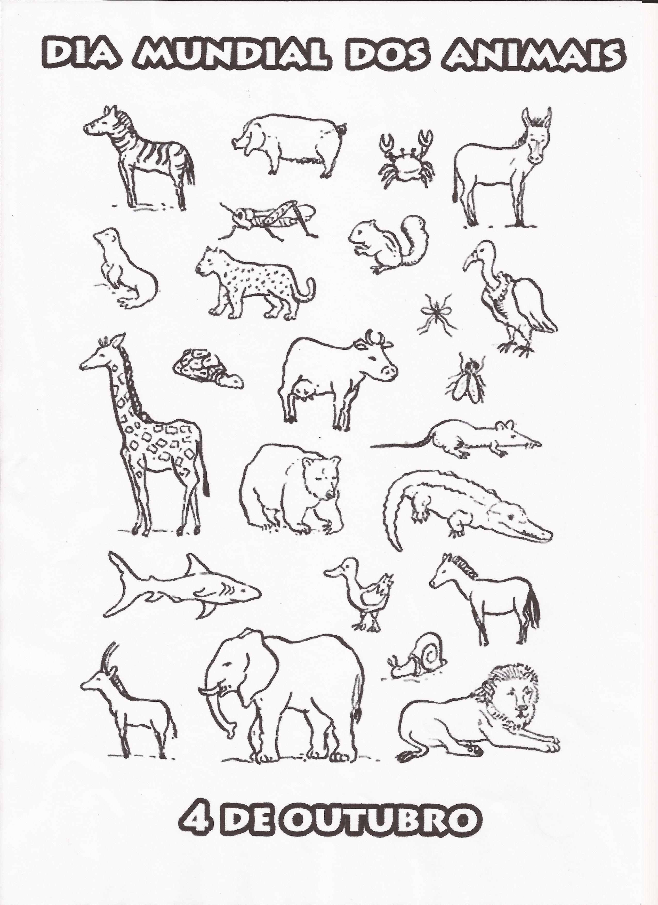 Populares PROJETO ANIMAIS - 4 • Alfabetização Blog EW07